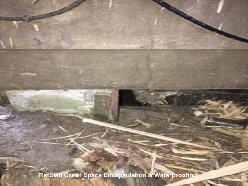 crawl space vent cover damaged