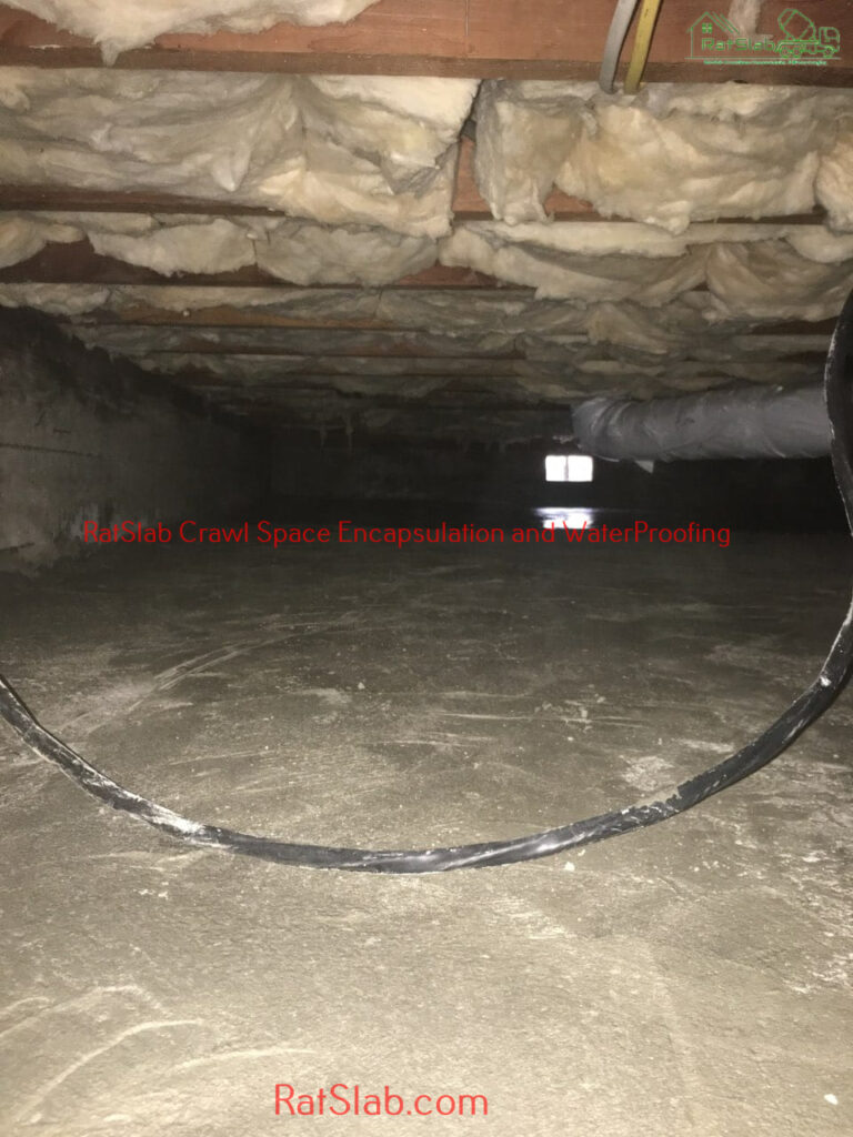 Crawl Space Inspection Cleaning Kent